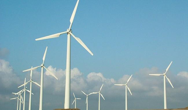 Fonte que mais cresce no Brasil, eólica já responde a 4,5% da energia nacional